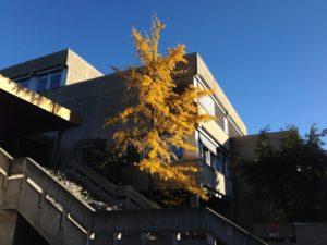 Collège de la Planta